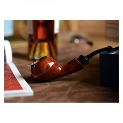 GIO' (selected) rhodesian pipe